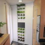 Minigarden, una forma de jardín vertical original 1