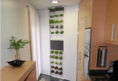 Minigarden, una forma de jardín vertical original