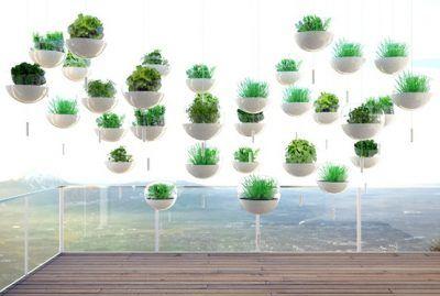 Creatividad y diseño en el cultivo