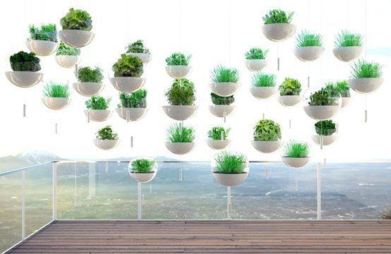 Inspiración para nuestro Jardín