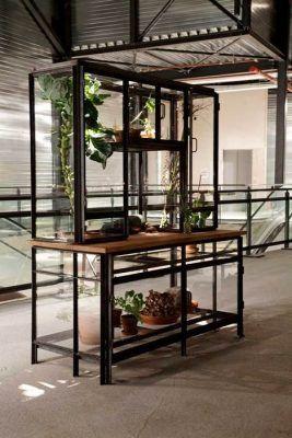 Un invernadero casero a veces es cuestión de creatividad y no de espacio 2