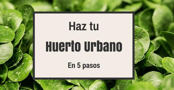 Huerto Urbano en 5 pasos