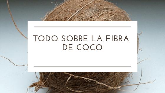 Todo sobre la Fibra de Coco