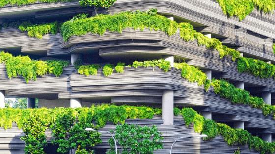 Hacer huerto urbano en terraza 6