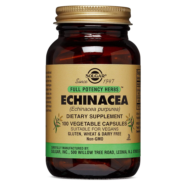 Equinacea, para reforzar tus defensas 2