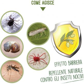 Aceite de Neem para la protección de las plantas contra diversas adversidades 3