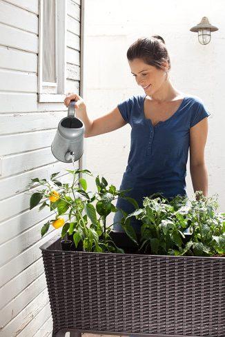 Keter - Mini huerto en casa Easy Grow con depósito de agua 9
