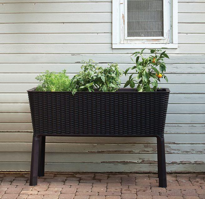 Keter - Mini huerto en casa Easy Grow con depósito de agua 2