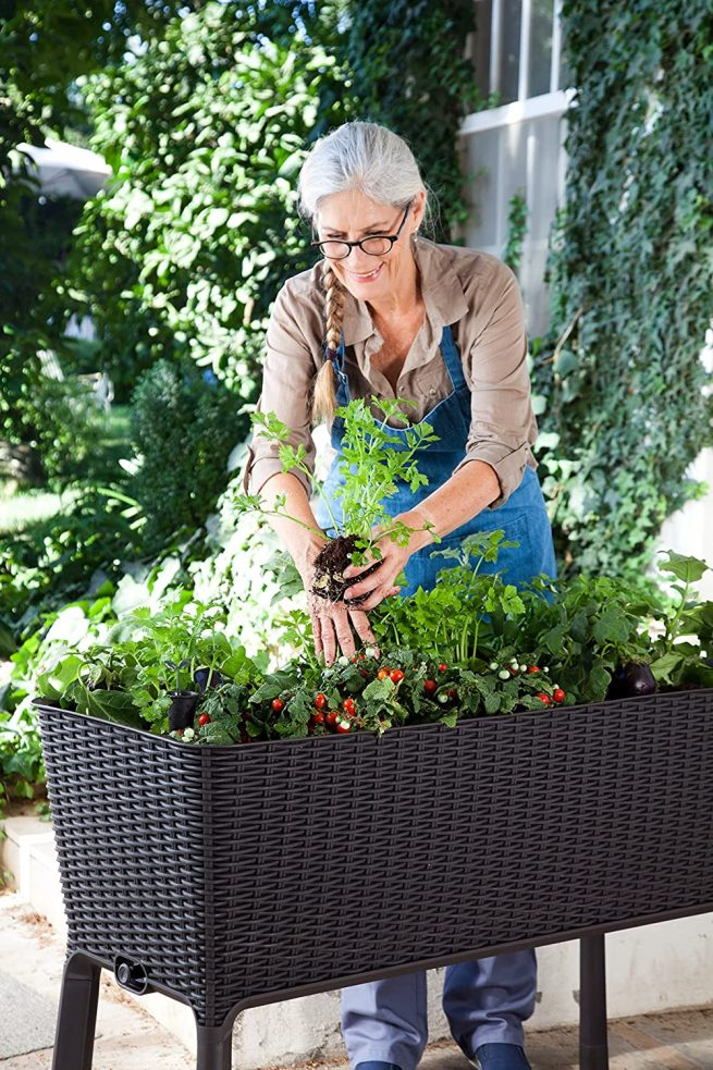 Keter - Mini huerto en casa Easy Grow con depósito de agua 6