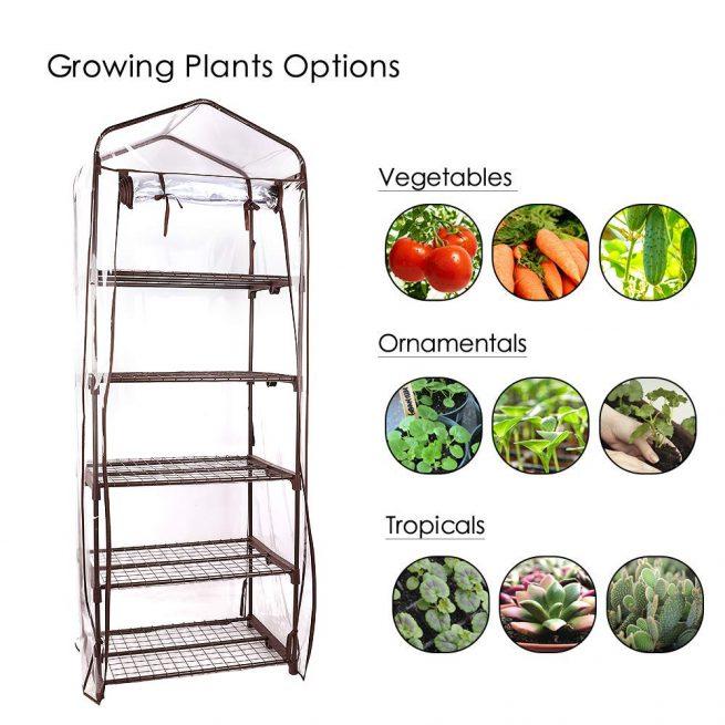 Worth Garden 5 Tier Brown Pequeño invernadero Cubierta de PVC transparente 4