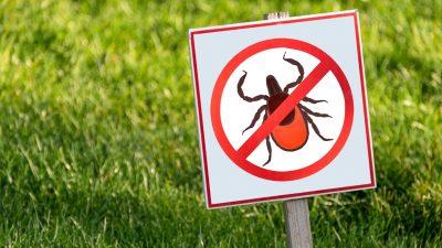 Protección Contra Insectos